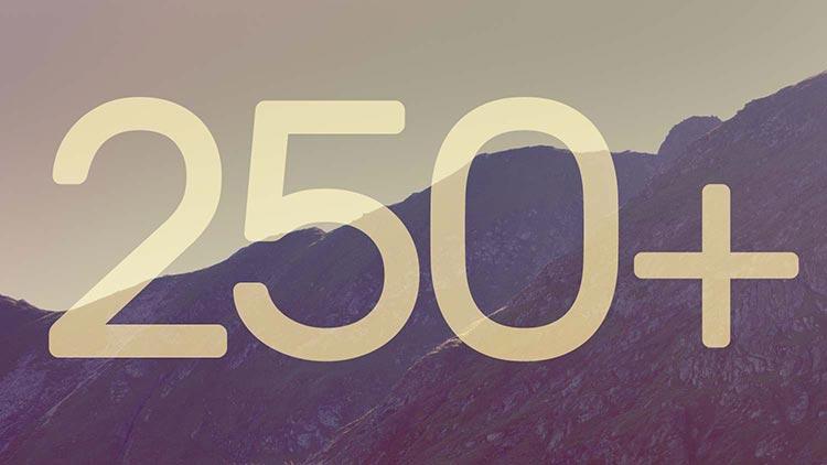 250 Clients